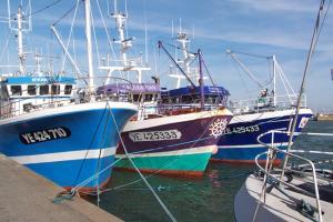D fi des ports de p che ile d 39 yeu 39 germonou 39 2014 d fi des po - Yeu annonces bateau peche ...